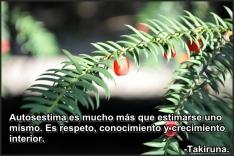 arnaldo quispe1