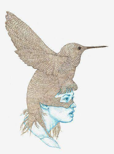 donna colibri