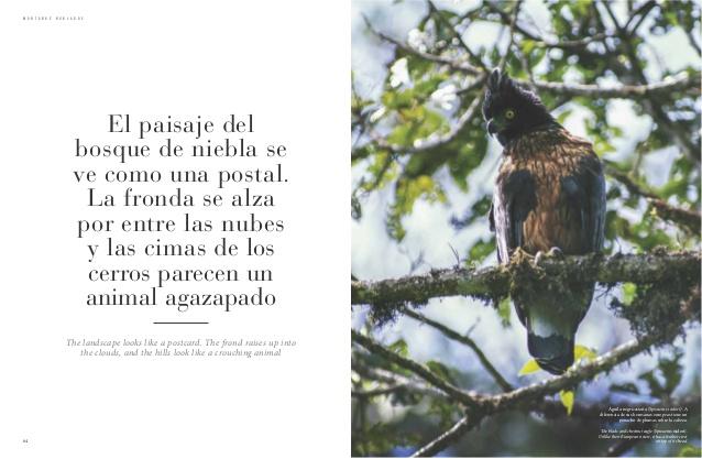 peru-reino-de-bosques-35-638