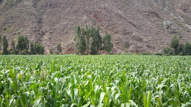 Hatun Karpay Valle Sagrado