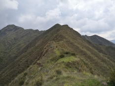 cima del saywa