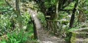 puente mandor